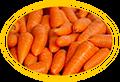 морковь для индюшат